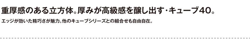 ユーロスリープラスト【キューブ40】