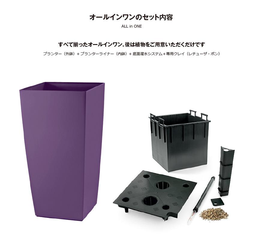 レチューザ【コラ40】