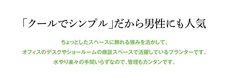 レチューザ【ミニキュービ】
