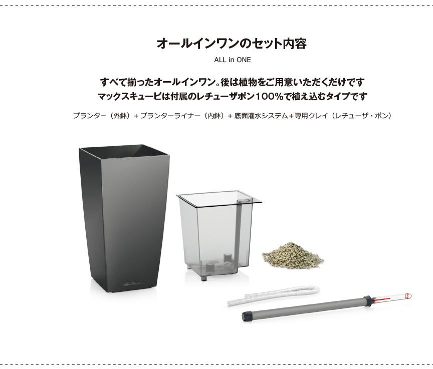 レチューザ【マックスキュービ】