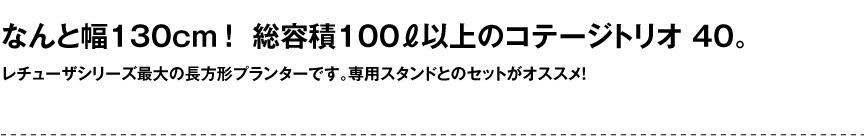 レチューザ【コテージトリオ40】